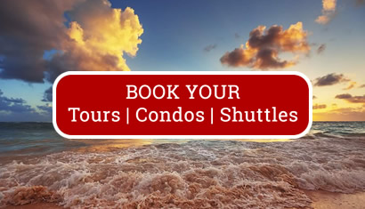 Book Hello Punta Cana Tours